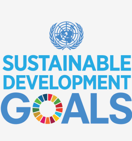 Learn in a Flash: Sustainable Development Goals